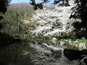 明主の滝公園