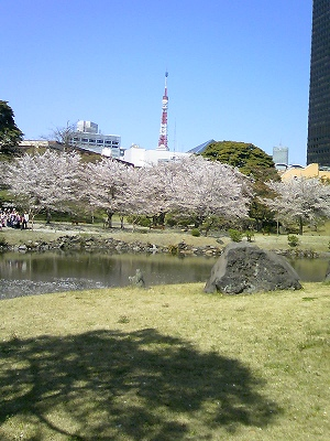 池とタワー
